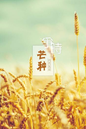 图片 _ 第(5)张